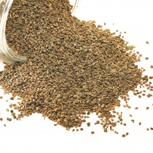 Meet The Spices – Ajwain