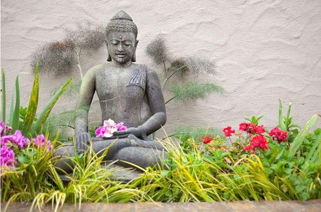 garden-statue-asian-statue-meditating-buddha-flowers-shepard-design-landscape-architecture_3908